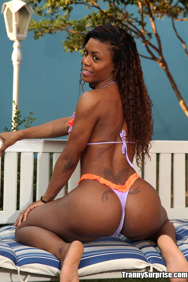 best-black-shemale-pornstar